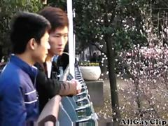 Two Chinese Boys Having Good Time gay porn gays gay cumshots swallow stud hunk