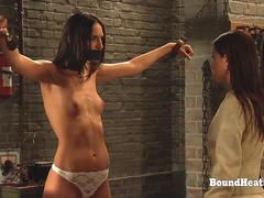 The Education of Erica Strap-on And Training For Lesbian Slaves
