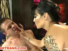 Transsexual Domina Humiliates a Gay Slave