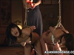 Two Asian sluts hanging on ropes as they are bdsmed
